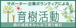 サポーター・企業ボランティアによる育樹活動